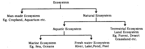 Our Environment Class 10 Notes Science Chapter 15 1