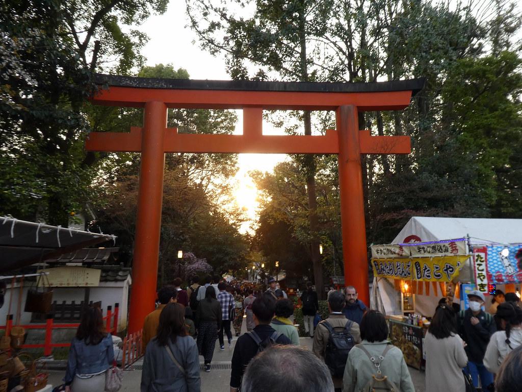 Тории перед храмом Ясака