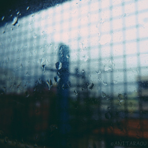 View in the Rain | Anita