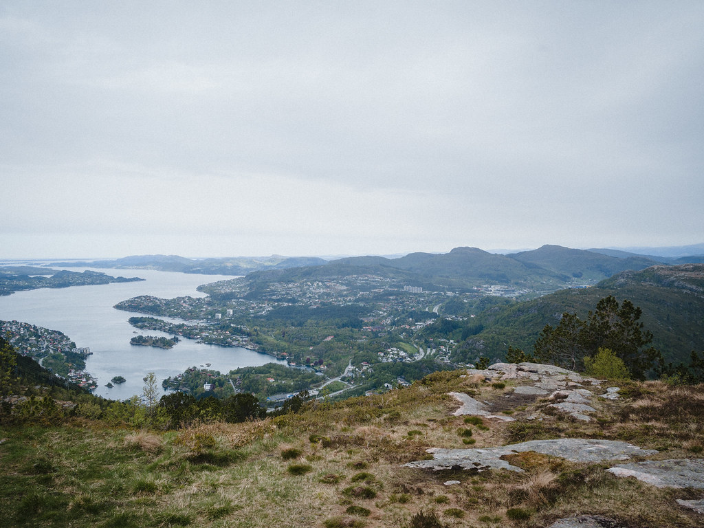 Elevated view over town and fjord from a mountain.