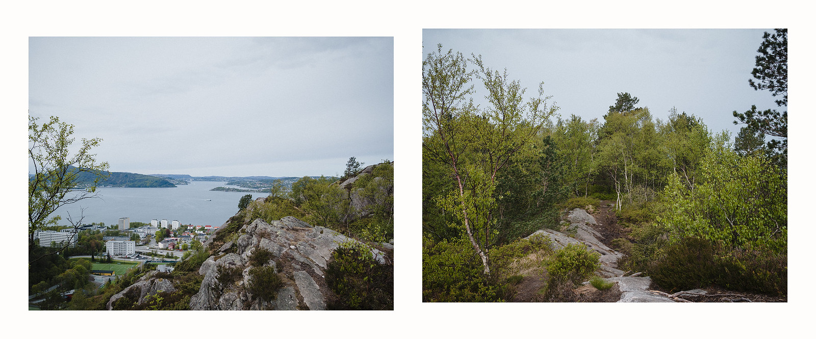 diptych panorama overlooking town and along a coarse trail into the woods