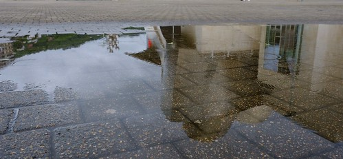 Lloviendo en el Guggenheim