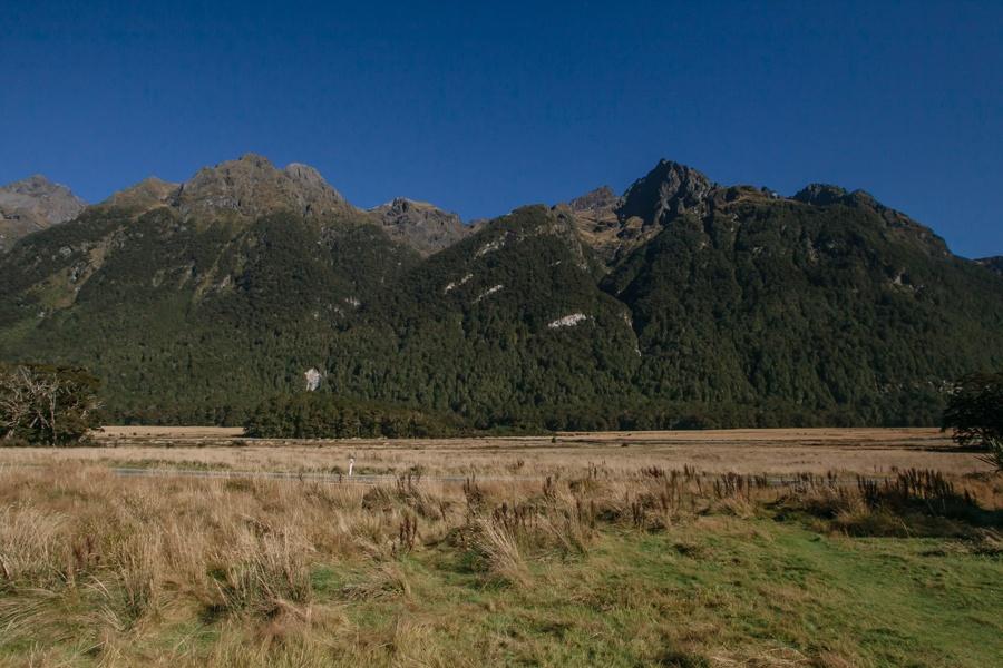 Новая Зеландия: Те-Анау и Фьордленд Новая Зеландия: Те-Анау и Фьордленд 47822057622 ca35c54e17 o
