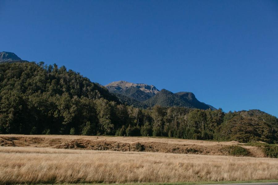 Новая Зеландия: Те-Анау и Фьордленд Новая Зеландия: Те-Анау и Фьордленд 47822057882 8870172c77 o