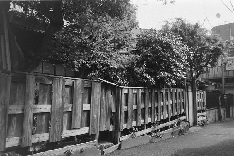 189LeicaM2 Summaron 35mm f35 Kodak 400TX 南池袋雑司ヶ谷