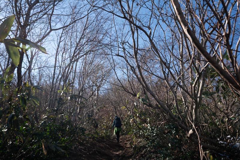 20190309_荒島岳_0081.jpg