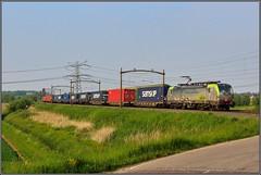 BLS 475 409 - Dordrecht 18-5