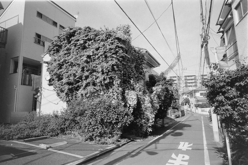 284LeicaM2 Voigtlander COLOR SKOPAR 21mm F4 Kodak 400TX 大塚三業通り
