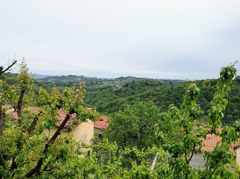 Wine estate Pintar Goriska Brda