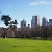 View of CBD from Fitzroy Gardens
