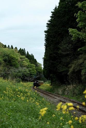 小湊鉄道をめぐる小旅行 14