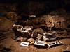 Koněpruské jeskyně, foto: Petr Nejedlý