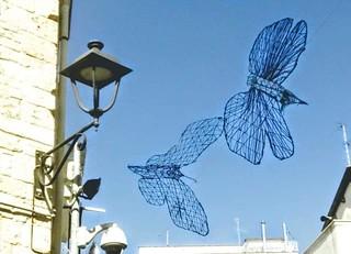 Farfalle azzurre
