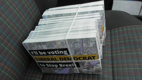 Lib Dem European Election postcards May 19