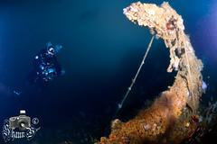 Scuba Diving at Los Picos - Gibraltar