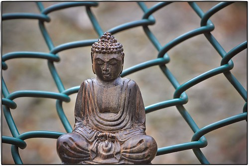Silence is a fence of wisdom.