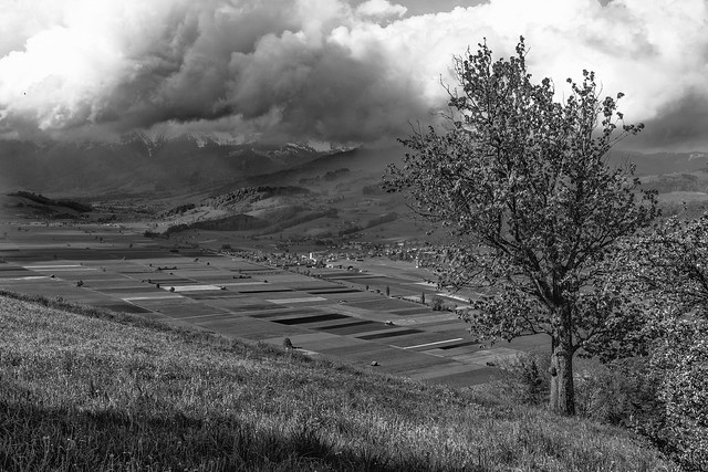 Flat Valley