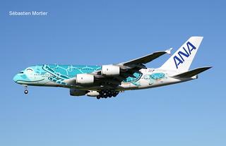 380.841 ALL NIPPON AIRWAYS F-WWAF 263 TO JA382A 30 04 19 TLS
