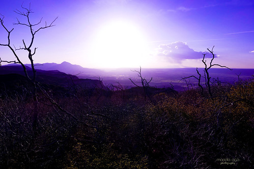 colorado mesaverdenationalpark evening sunset sun light glow mountains hills landscape