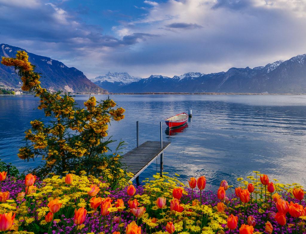 Swiss Spring