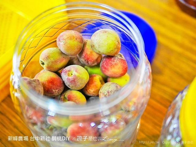 新峰農場 台中新社 醃桃DIY 12