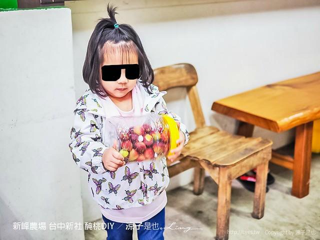 新峰農場 台中新社 醃桃DIY 19