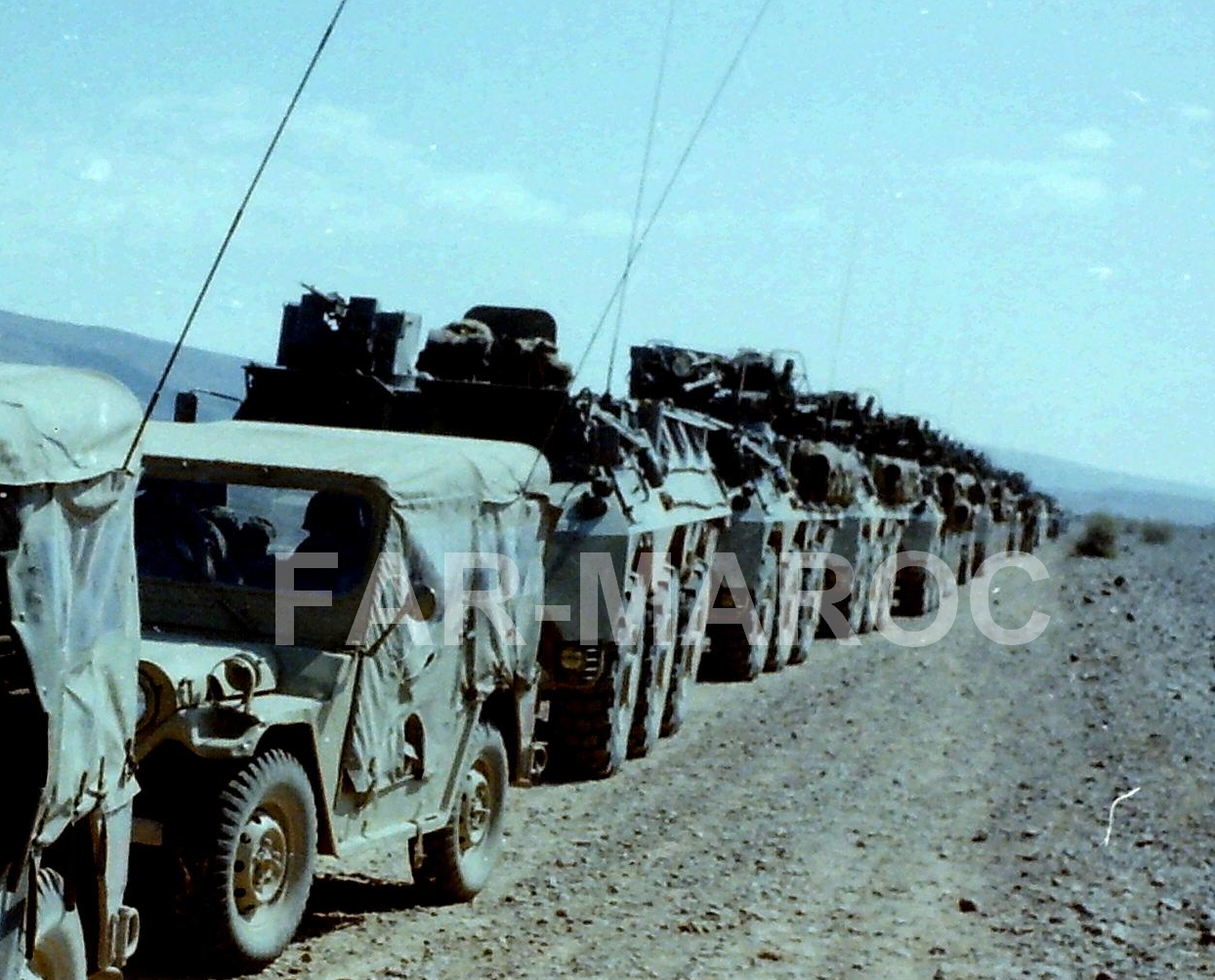Renault VAB VTT et VCI des Forces Armées Royales 47836976431_aa0df7aa56_o