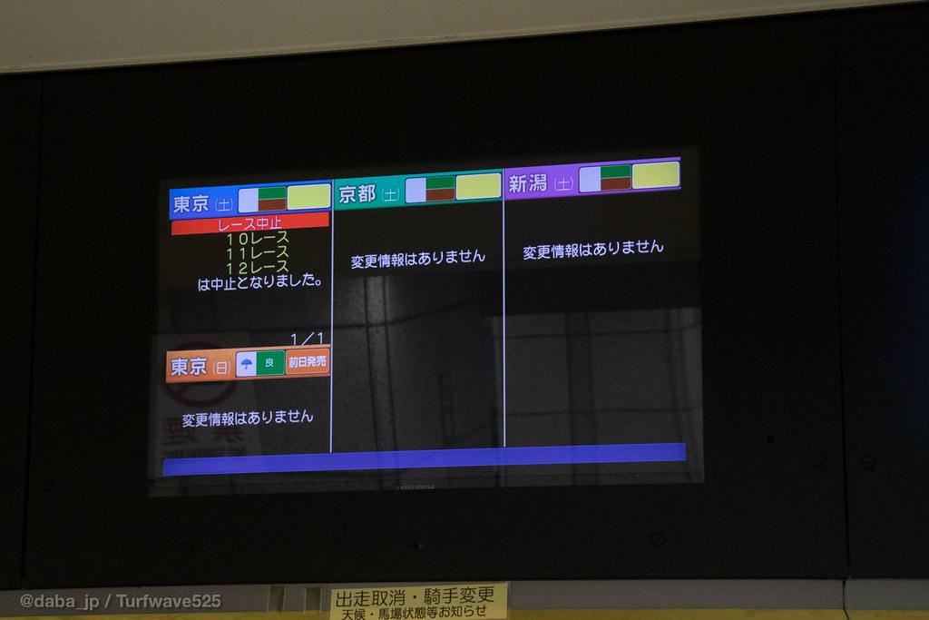 場 馬場 状態 東京 競馬