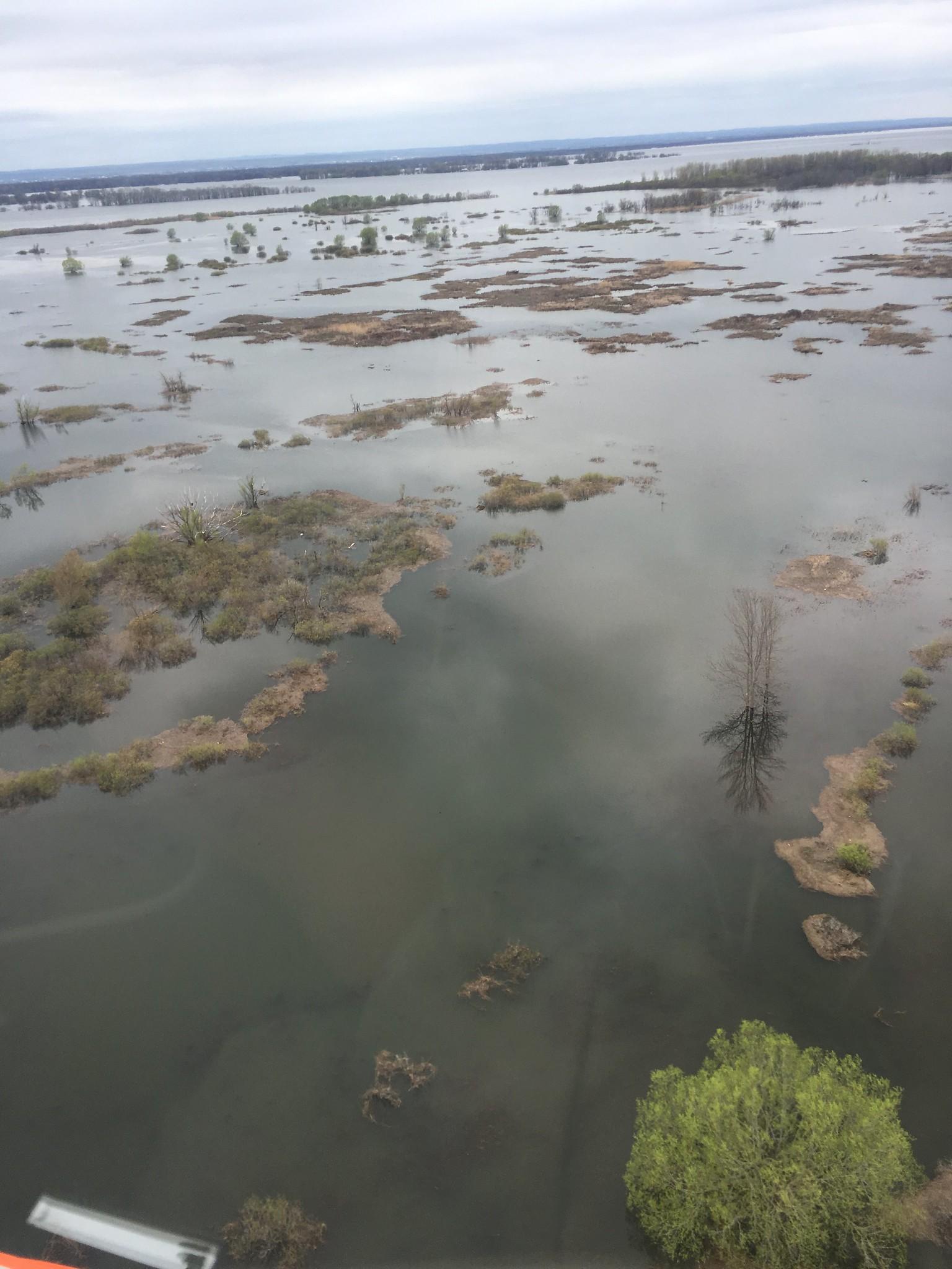 Flooding rivers were abundant along transects in 2019. Photo: Garrett Wilkerson, USFWS