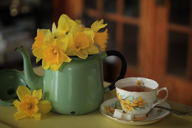 132. Daffodil tea.