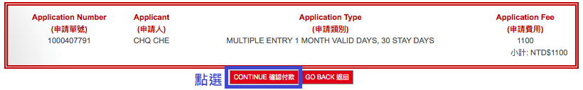 電子簽證申請8