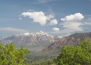Mt. Ben Lomond
