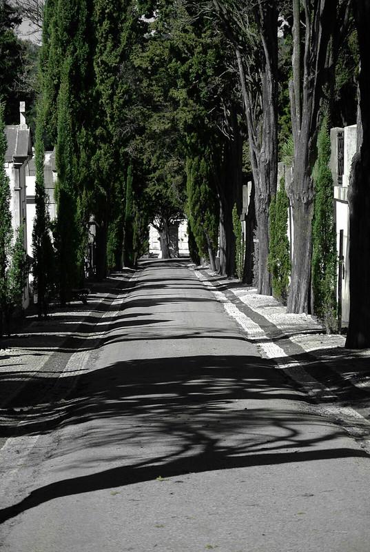 Lisbon_2019_544