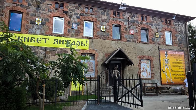 Янтарный замок, Янтарный