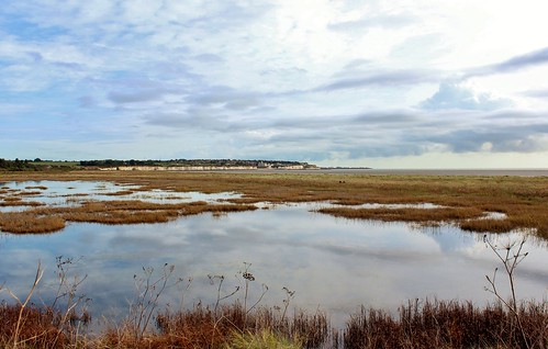 Pegwell Bay Country Park, Ramsgate