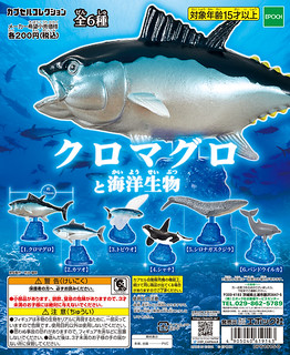 EPOCH 「藍鰭金槍魚&海洋生物」悠遊的桌上水族館!クロマグロと海洋生物