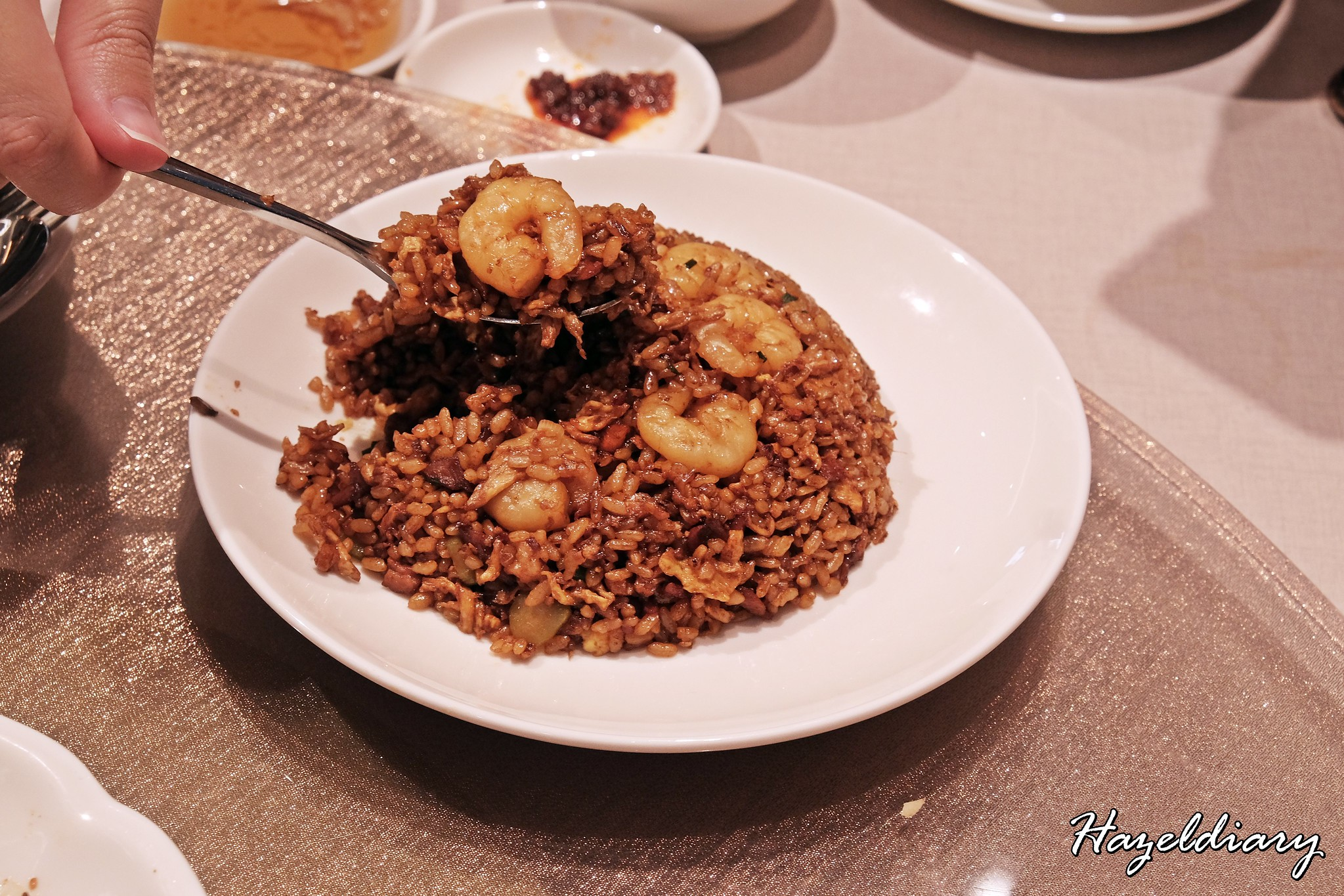 Paradise Dynasty Suntec City Outlet-Fried Rice
