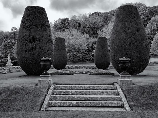 The Lanhydrock garden