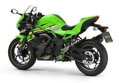 Kawasaki Ninja 125 Performance 2019 - 11