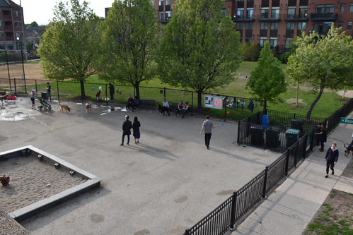 Dog Park -from the 606