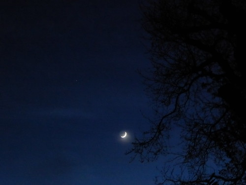Patio Moon