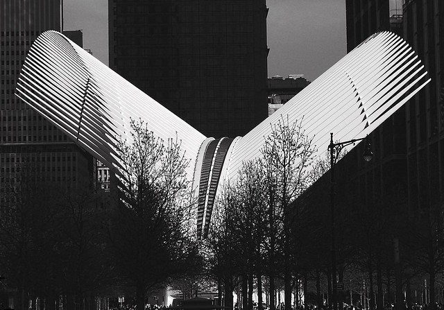 the neW iConiC OculuS | NYC