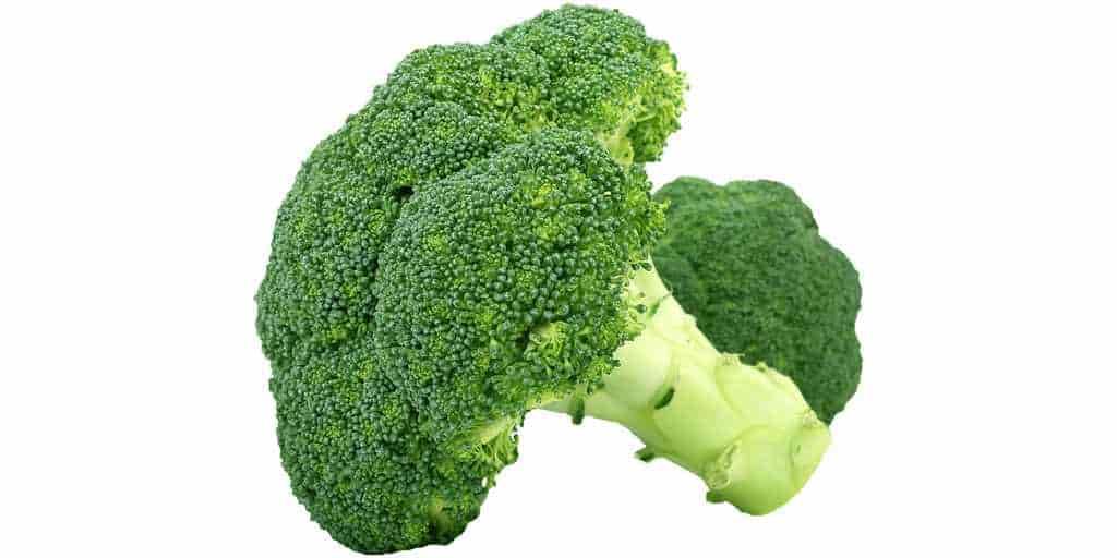 Le brocoli pour prévenir et traiter le cancer