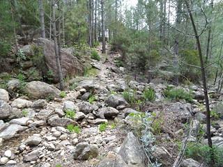Retour sur le Chemin de Paliri : arrivée au ruisseau de Peru