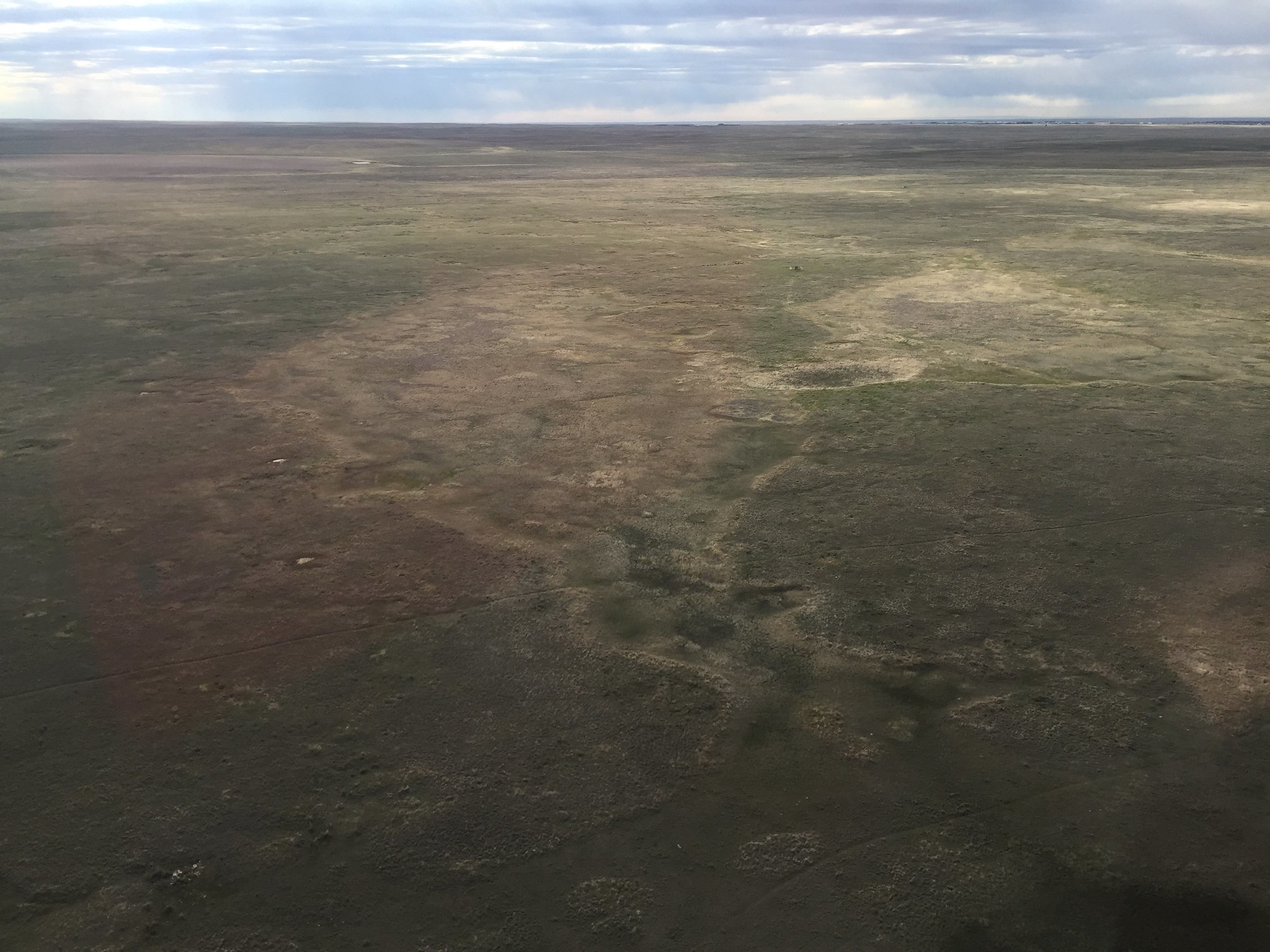 Southern Alberta habitat is dry in the northeast portion of Stratum 28. USFWS