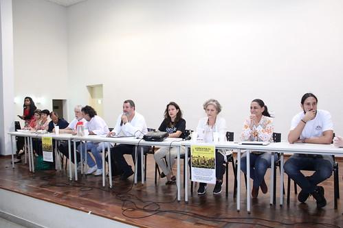 Comissão de meio ambiente e Política Urbana –Reunião Extraordinária -  Debater o Plano Diretor e diretrizes especiais ADE Santa Tereza – impactos ao plano global específico PGE da Vila Dias.