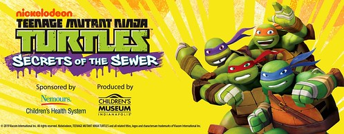It's Turtle Power Time at the Orlando Science Center