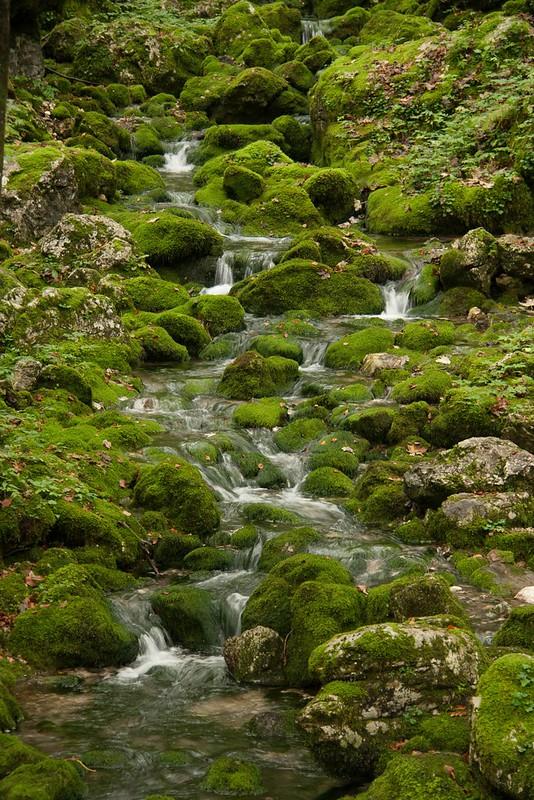 Lake Bohinj waterfall landscape