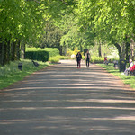 Walkway at Haslam park, preston