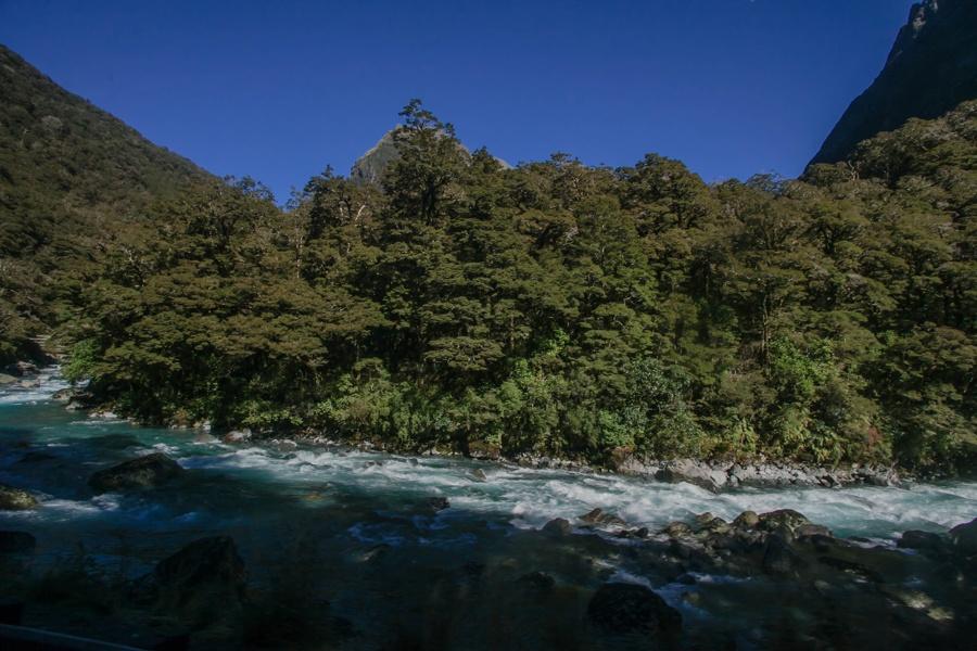Новая Зеландия: Те-Анау и Фьордленд Новая Зеландия: Те-Анау и Фьордленд 47874271581 b1feef5ef4 o
